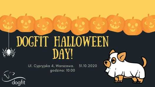 DogFit Halloween Day