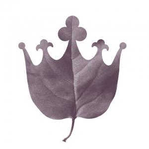 łazienki Królewskie Wizytówka Na Waw4freee